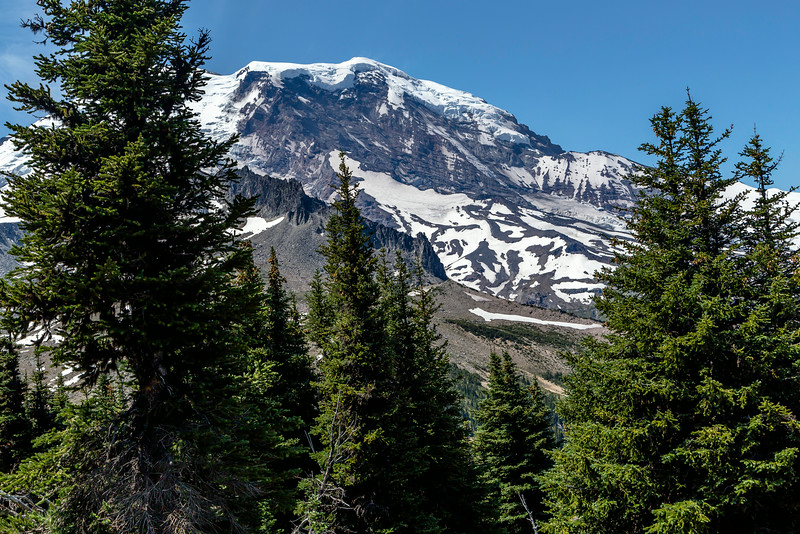 Day 10 Mt Rainier_8270