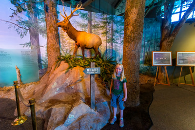 Hannah at the Mt St Helens Forest Learning Center.