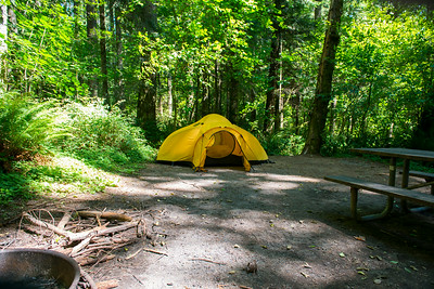 Campsite (#64) at Seaquest State Park