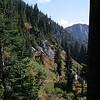 Hillside along lower trail #2