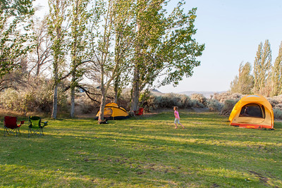 Our campsite at Wanapum State Park with Raylene and John's tents set up, but before Stephen and Lou show up.