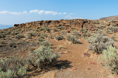 Scenery near  an overlook over the Columbia River near Vantage, WA