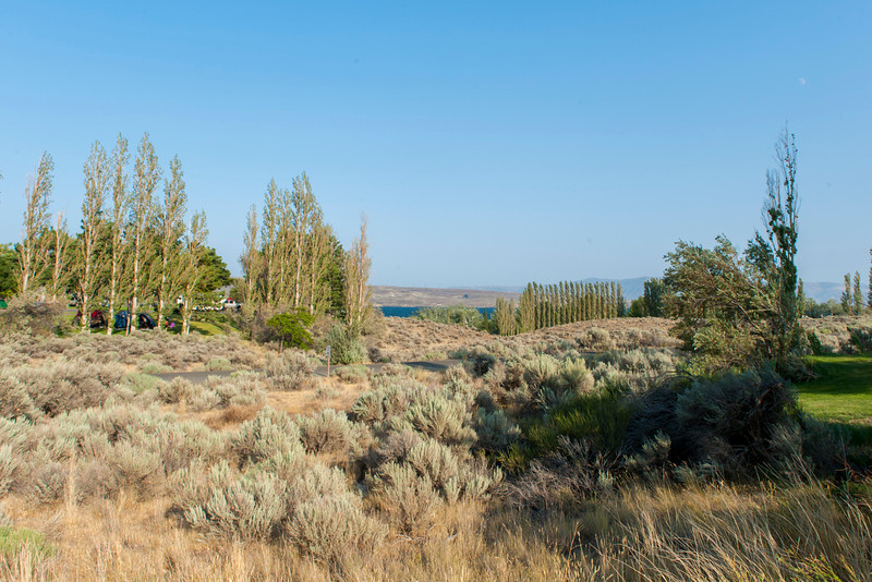 View east from our campsite at Wanapum State Park