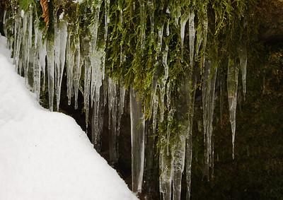 Coal Creek in Winter - 2008