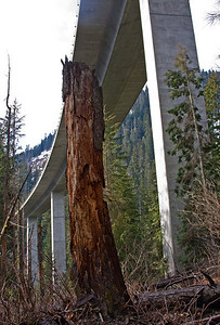 "MD:  ""This defines the juxtaposition of rugged beauty and industry that is Snoqualmie Pass"""