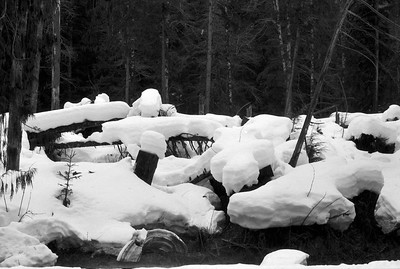 Snowcaps