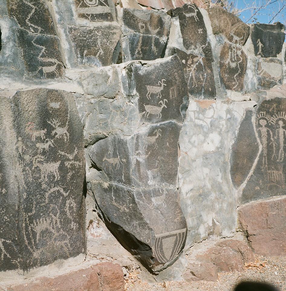 Wanapum petroglyghs
