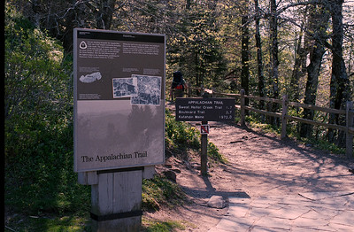 Appalachian Trail at Newfound Gap