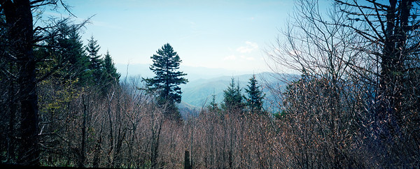 Smokey Mountains from Sweat Heifer Creek Trail