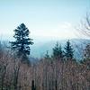 Smokey Mountains from Sweat Heifer Creek Trail