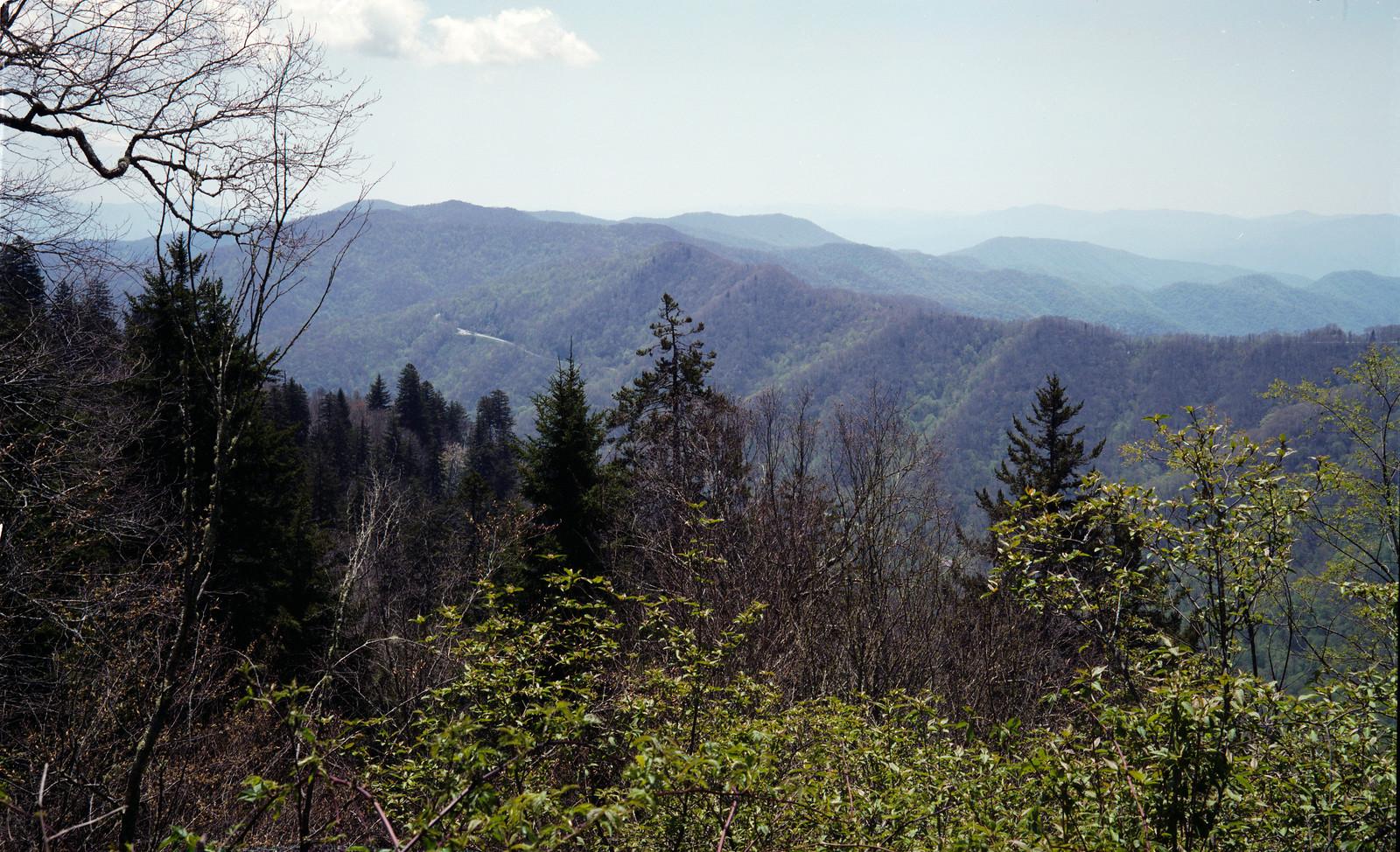 Smokey Mountains from Newfound Gap