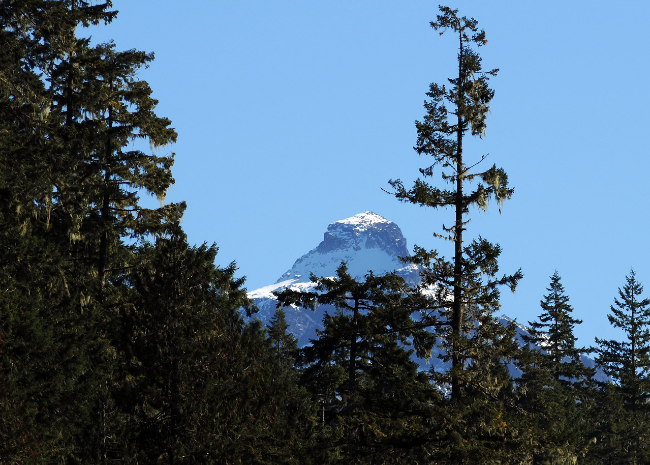 Mount Pugh from Old Salk Trail