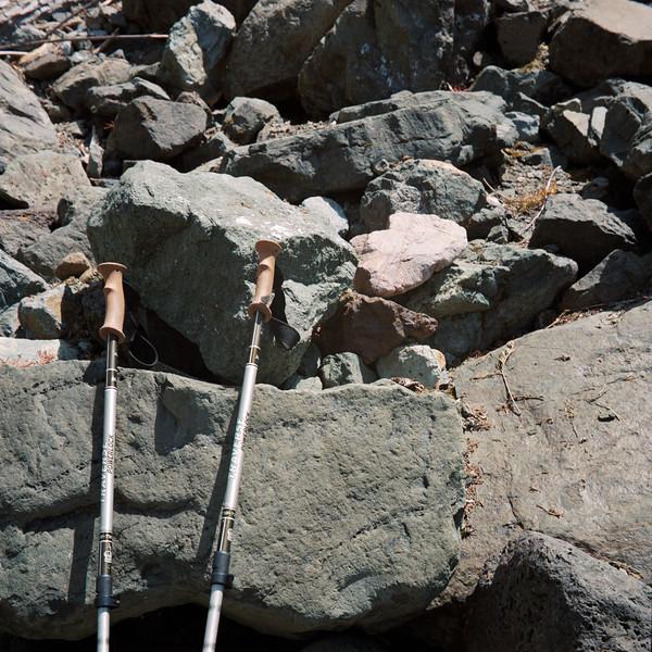 Butterfly on Trekking Poles