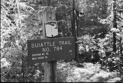 Suiattle Trail Sign