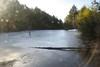 Series of beaver ponds
