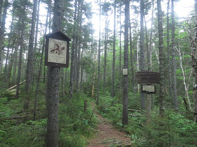 New sign dealing with historical artifacts at the Pemi boundary