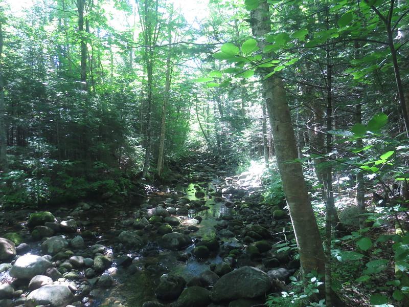 Nice brook