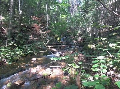 Cascades on Birch Island Brook