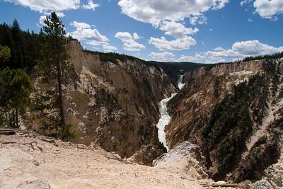 Yellowstone 2011 Nikki's Pics