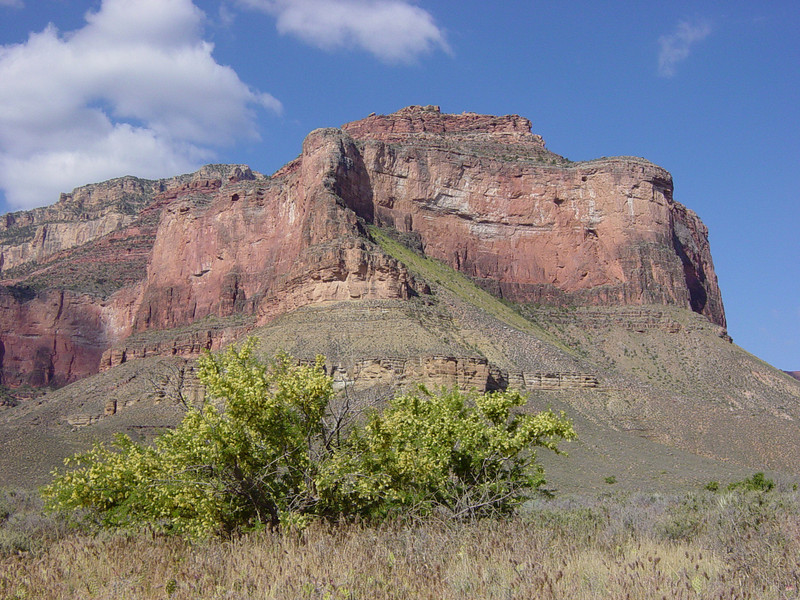 Walking from Indian Gardens toward Plateau Point