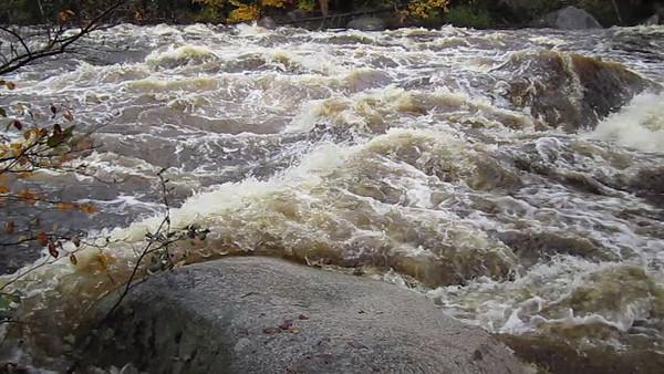 White Mountains ... Oct 1-3, 2010
