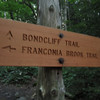 At the Pemi Wilderness boundary.  Because of the removal of the suspension bridge over the East Branch Pemi River in the eastern part of the Pemi Wilderness, certain trail sections were closed and/or renamed.  In this case, the Bondcliff Trail now begins here, at the former junction of the Franconia Brook Trail and the Wilderness Trail.