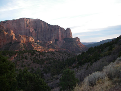 Camp Creek, Zion 2006