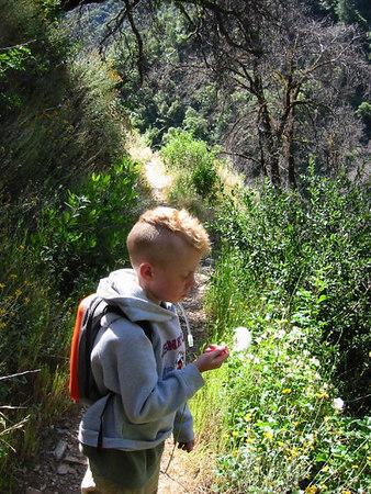 Stevens Trail Hike - June '06