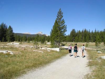 Yosemite Aug 08 Waterwheel