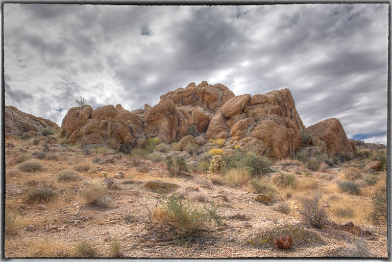 Hiking in Joshua Tree