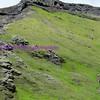 ófærufoss, eldgjá chasm, iceland