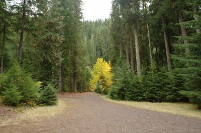 Pamelia Lake Trailhead
