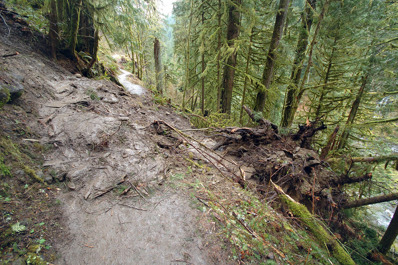 Here's where about 15' of the trail has been wiped out by a land slide from far above the trail.