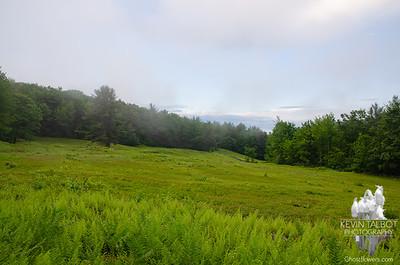 Blueberry fields on a foggy Foss Mountain...