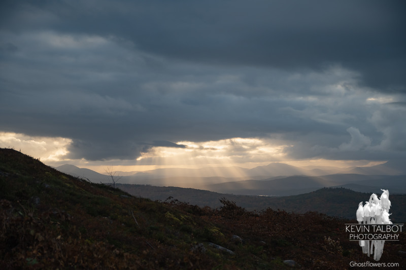 Mostly cloudy, but beautiful crepuscular rays to the west...