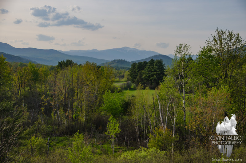 Mount Washington from Intervale.