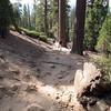 John Muir Trail 10:00 am.