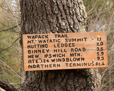 Mt Watatic and Leominster State Forest