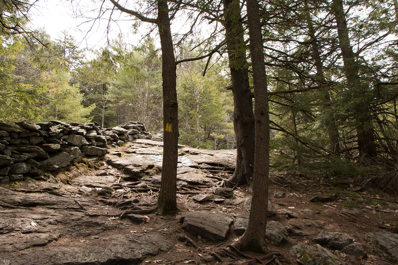 Beautiful stone walls along the trail even high up near the summit