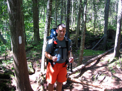Tramper Al's trekking pole was a casualty of the blowdown