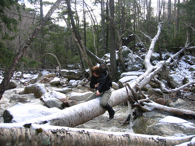 MtnMama slides across a downed birch to cross a second brook