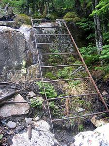 A rickety metal ladder
