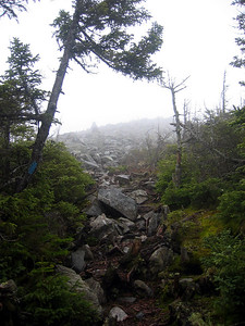 Heading on the side trail to Mt. Abraham