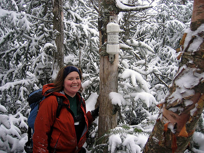 Scar Ridge bushwhack: Dec 4