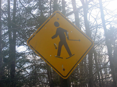 I like that they turned the sign into a skier