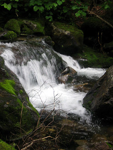 Cascades in Cold Brook