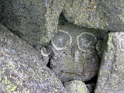 A stone face hiding in the rocks