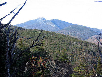 View of Mt. Mansfield from Puffer Shelter