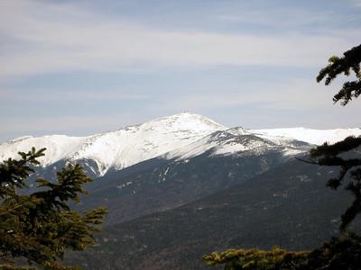 Avalon, Field & Tom spring hike: April 21