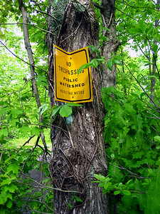 "Always good to find a blaze beneath a \""no trespassing\"" sign"